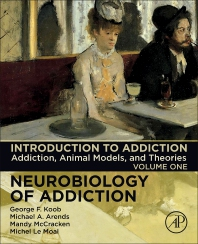 Cover image for Introduction to Addiction