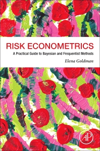 Cover image for Risk Econometrics