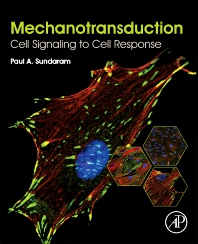 Mechanotransduction - 1st Edition - ISBN: 9780128178829, 9780128178836