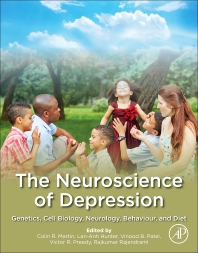 The Neuroscience of Depression - 1st Edition - ISBN: 9780128179352