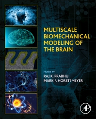 Cover image for Multiscale Biomechanical Modeling of the Brain