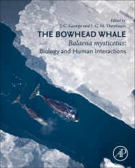 Cover image for The Bowhead Whale