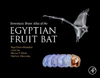 Cover image for Stereotaxic Brain Atlas of the Egyptian Fruit Bat
