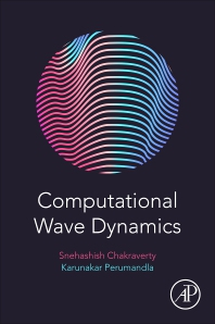 Cover image for Computational Wave Dynamics