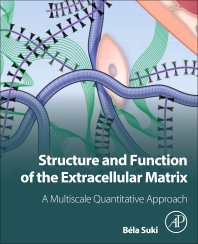 Cover image for Structure and Function of the Extracellular Matrix