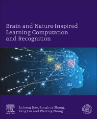 Cover image for Brain and Nature-Inspired Learning Computation and Recognition