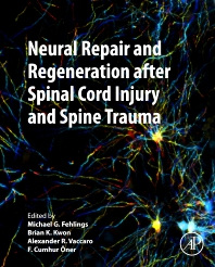 Cover image for Neural Repair and Regeneration after Spinal Cord Injury and Spine Trauma