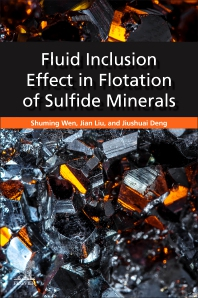 Cover image for Fluid Inclusion Effect in Flotation of Sulfide Minerals