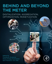Cover image for Behind and Beyond the Meter