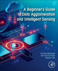 Cover image for A Beginner's Guide to Data Agglomeration and Intelligent Sensing