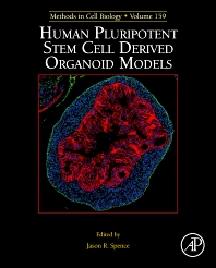 Cover image for Human Pluripotent Stem Cell Derived Organoid Models