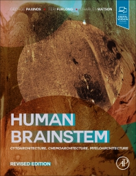 Cover image for Human Brainstem