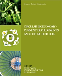 Cover image for Biomass, Biofuels, Biochemical