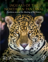 Cover image for Jaguars of the Northern Pantanal