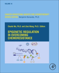 Cover image for Epigenetic Regulation in Overcoming Chemoresistance
