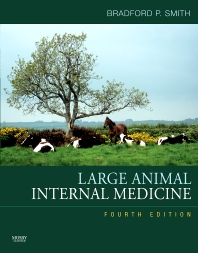 Large Animal Internal Medicine - 4th Edition - ISBN: 9780323042970, 9780323062947
