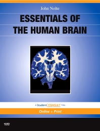 Cover image for Essentials of the Human Brain