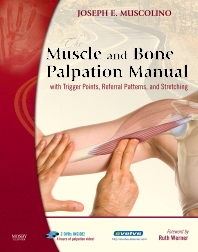 The Muscle and Bone Palpation Manual with Trigger Points, Referral Patterns and Stretching - 1st Edition - ISBN: 9780323183147
