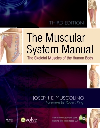 The Muscular System Manual, 3rd Edition,Joseph Muscolino,ISBN9780323057233