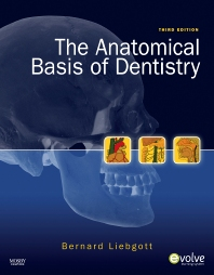 The Anatomical Basis of Dentistry - 3rd Edition - ISBN: 9780323068079, 9780323095037