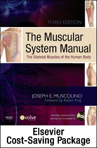 The Muscular System Manual - Text, Flashcards 2e, and Coloring Book 2e Package - 3rd Edition - ISBN: 9780323071666