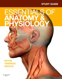 Cover image for Study Guide for Essentials of Anatomy & Physiology