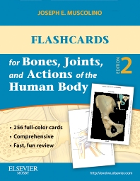 Cover image for Flashcards for Bones, Joints, and Actions of the Human Body
