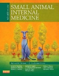 Small Animal Internal Medicine - 5th Edition - ISBN: 9780323086820, 9780323242998