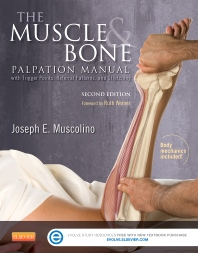 Cover image for The Muscle and Bone Palpation Manual with Trigger Points, Referral Patterns and Stretching