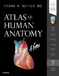 cover of Atlas of Human Anatomy - 7th Edition
