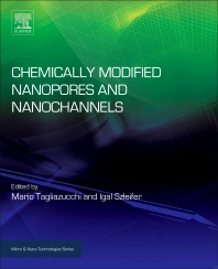 Cover image for Chemically Modified Nanopores and Nanochannels
