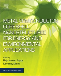 Cover image for Metal Semiconductor Core-shell Nanostructures for Energy and Environmental Applications