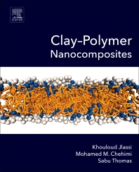 Cover image for Clay-Polymer Nanocomposites