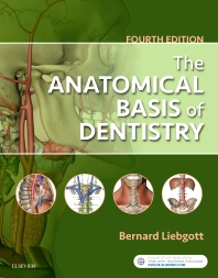 Cover image for The Anatomical Basis of Dentistry