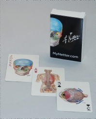 Cover image for Netter Playing Cards