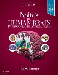 Nolte's The Human Brain in Photographs and Diagrams - 5th Edition - ISBN: 9780323598163, 9780323598170