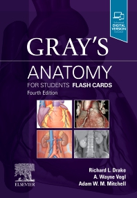 Cover image for Gray's Anatomy for Students Flash Cards