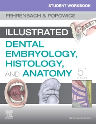 Student Workbook for Illustrated Dental Embryology, Histology and Anatomy - 5th Edition - ISBN: 9780323639903, 9780323639910