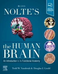 Cover image for Nolte's The Human Brain