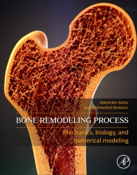 Cover image for Bone Remodeling Process