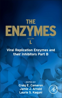 Cover image for Viral Replication Enzymes and their Inhibitors Part B