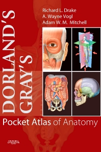 Cover image for Dorland's/Gray's Pocket Atlas of Anatomy