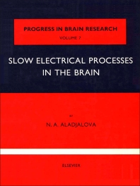 Slow Electrical Processes in the Brain - 1st Edition - ISBN: 9780444400079, 9780080861319