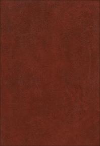 Regional Studies - 1st Edition - ISBN: 9780444414052, 9780444598950