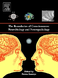 Cover image for The Boundaries of Consciousness: Neurobiology and Neuropathology