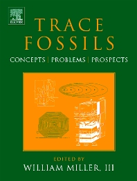 Cover image for Trace Fossils