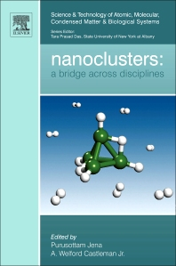 Cover image for Nanoclusters