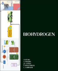 Cover image for Biohydrogen
