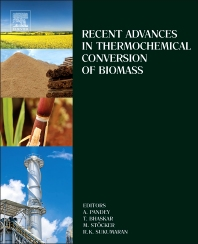 cover of Recent Advances in Thermochemical Conversion of Biomass - 1st Edition
