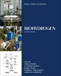 Biomass, Biofuels, Biochemicals - 2nd Edition - ISBN: 9780444642035, 9780444642042